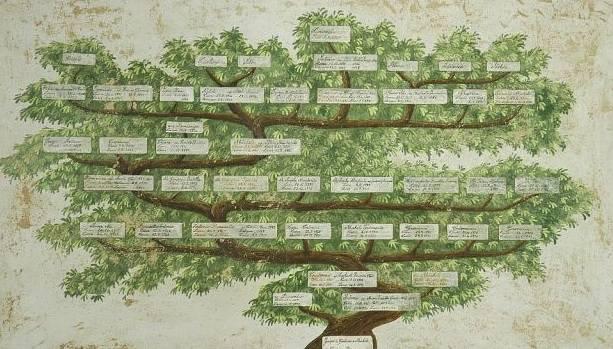 Trentatré 2016: De-generazioni / un teatro geneticamente modificato