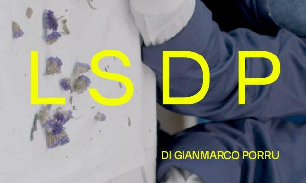 L.S.D.P. | GianMarco Porru / DanceHauspiù
